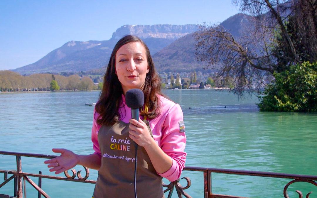 Crazy La Mie Câline Tour Annecy - by the way