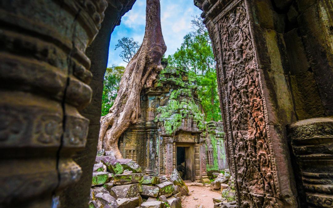 ta prohm angkor temple